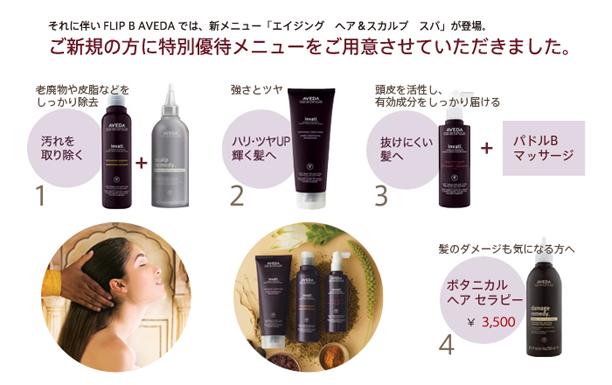 1、老廃物や皮脂などを しっかり除去。2、強さとツヤ。3、頭皮を活性し、 有効成分をしっかり届ける。4、髪のダメージも気になる方へ